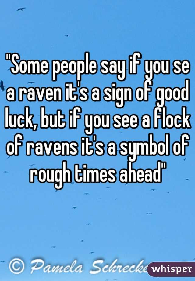 """""""Some people say if you se a raven it's a sign of good luck, but if you see a flock of ravens it's a symbol of rough times ahead"""""""