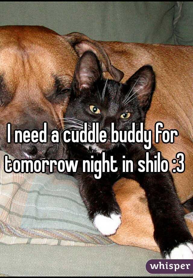 I need a cuddle buddy for tomorrow night in shilo :3