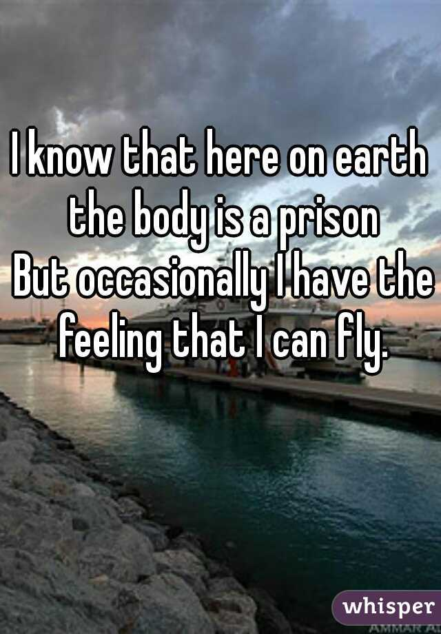 I know that here on earth the body is a prison  But occasionally I have the feeling that I can fly.