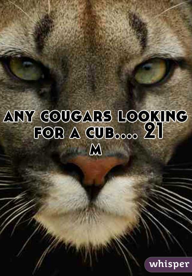 any cougars looking for a cub.... 21 m
