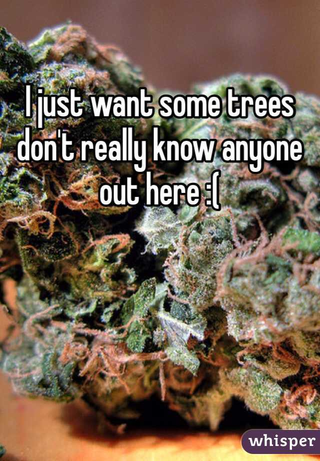 I just want some trees don't really know anyone out here :(