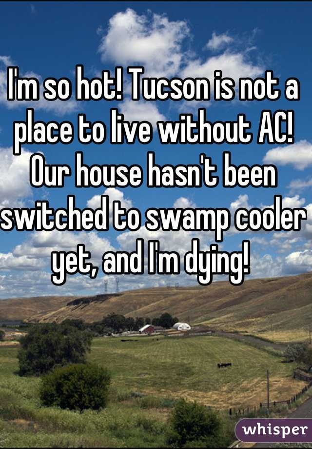 I'm so hot! Tucson is not a place to live without AC! Our house hasn't been switched to swamp cooler yet, and I'm dying!