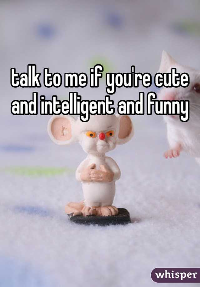 talk to me if you're cute and intelligent and funny