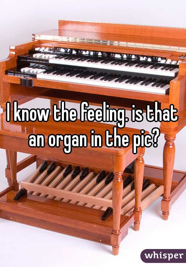 I know the feeling. is that an organ in the pic?
