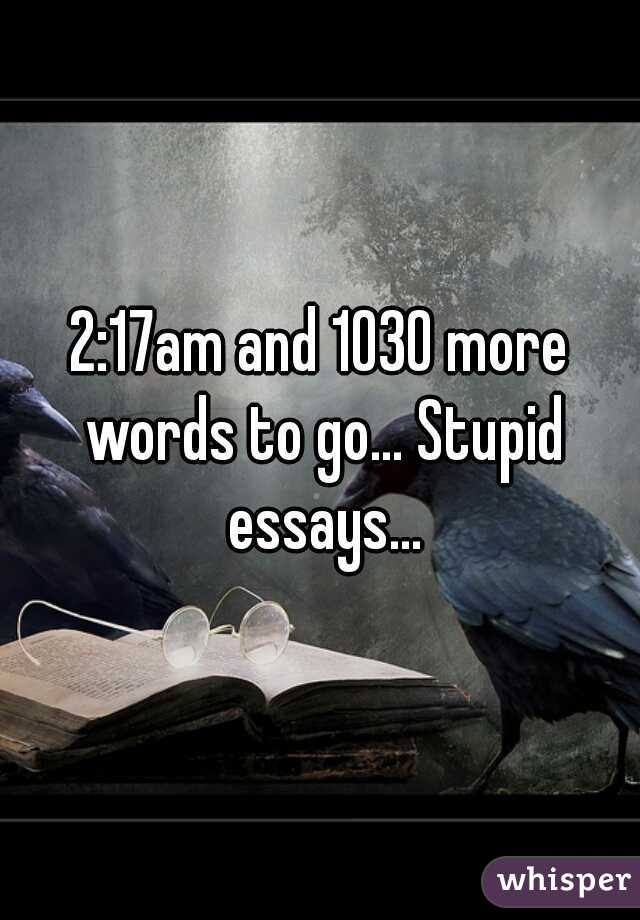 2:17am and 1030 more words to go... Stupid essays...