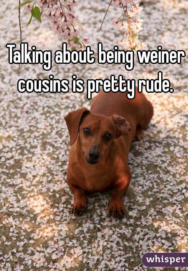 Talking about being weiner cousins is pretty rude.