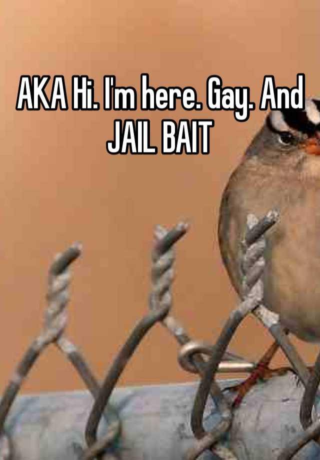 Gay House Bait