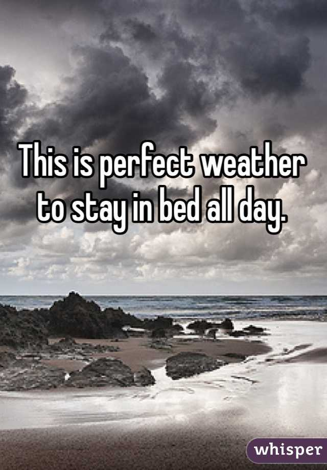 This is perfect weather to stay in bed all day.