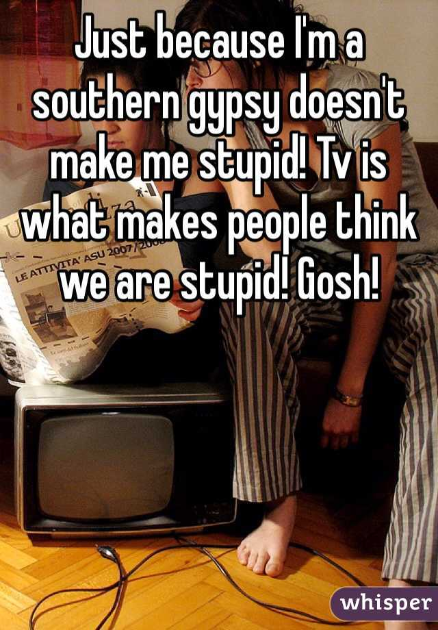Just because I'm a southern gypsy doesn't make me stupid! Tv is what makes people think we are stupid! Gosh!