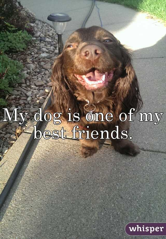 My dog is one of my best friends.