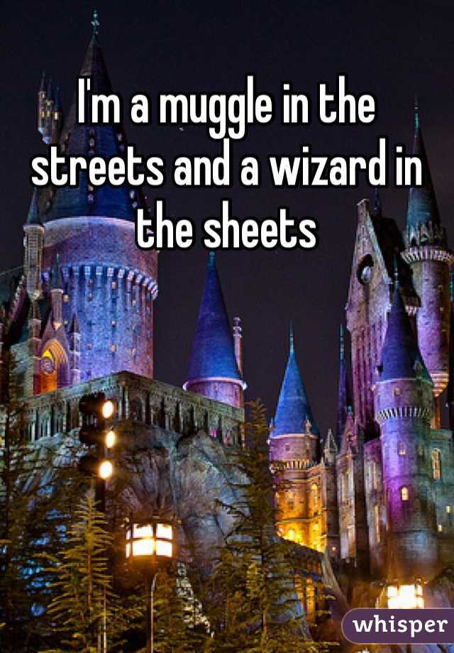 I'm a muggle in the streets and a wizard in the sheets