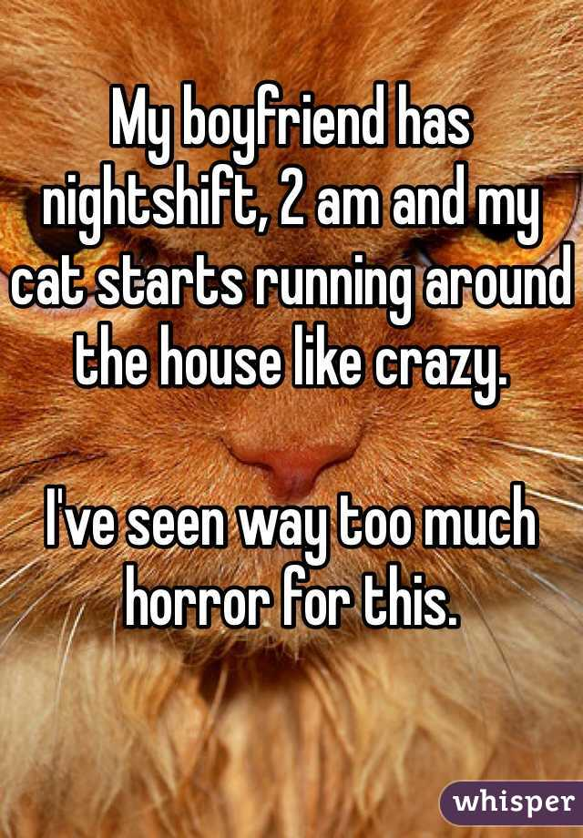 My boyfriend has nightshift, 2 am and my cat starts running around the house like crazy.   I've seen way too much horror for this.