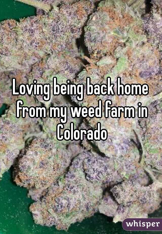 Loving being back home from my weed farm in Colorado