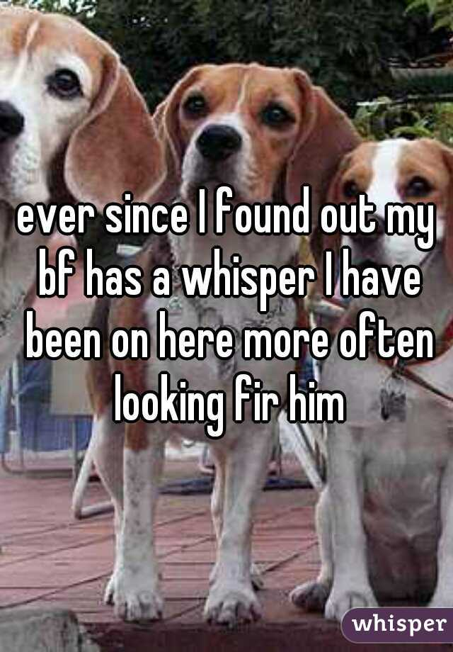 ever since I found out my bf has a whisper I have been on here more often looking fir him