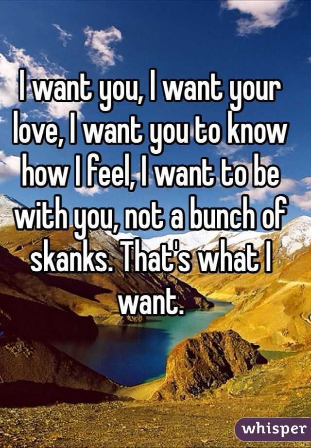 I want you, I want your love, I want you to know how I feel, I want to be with you, not a bunch of skanks. That's what I want.