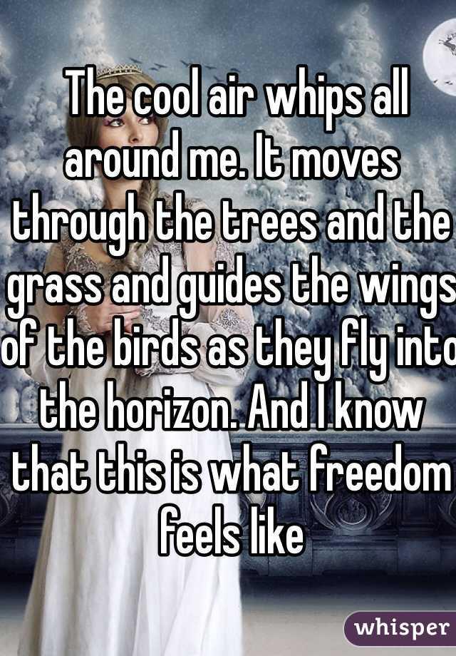 The cool air whips all around me. It moves through the trees and the grass and guides the wings of the birds as they fly into the horizon. And I know that this is what freedom feels like