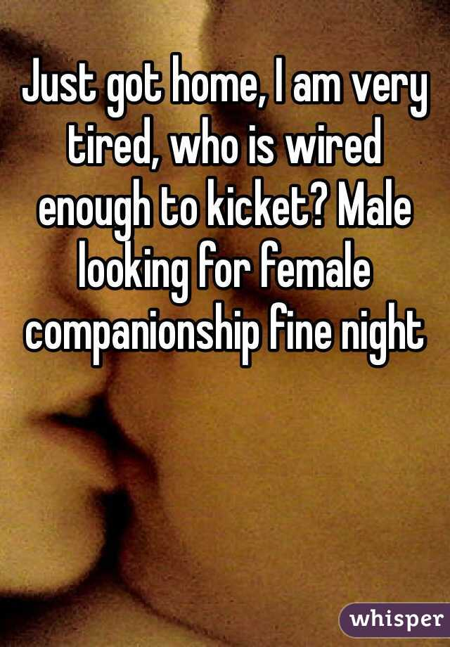 Just got home, I am very tired, who is wired enough to kicket? Male looking for female companionship fine night