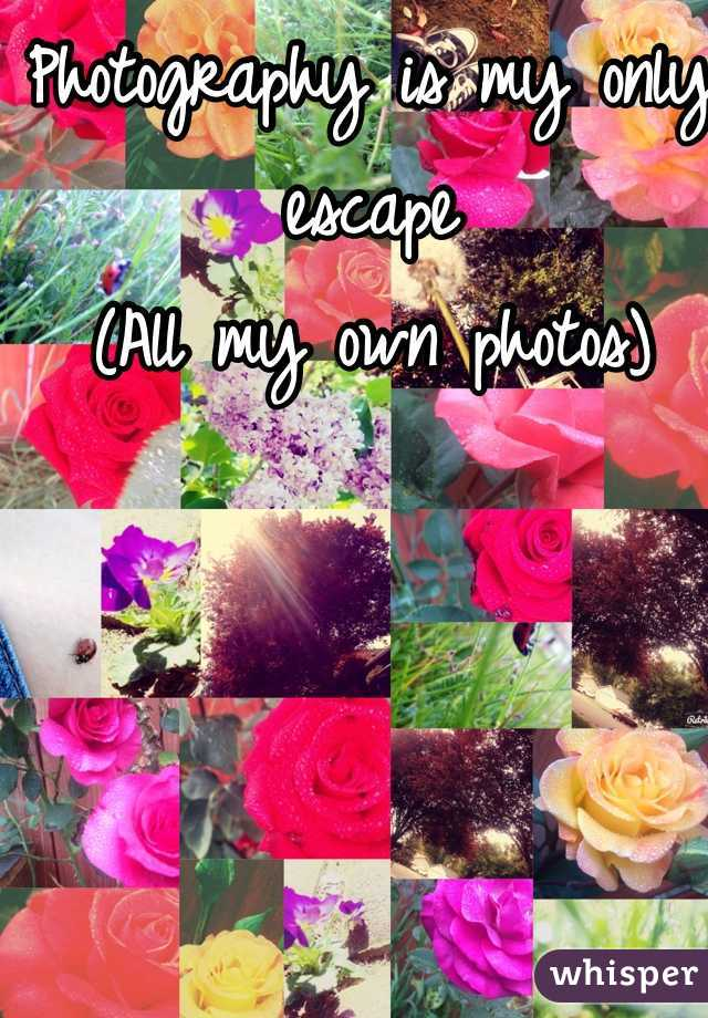 Photography is my only escape (All my own photos)