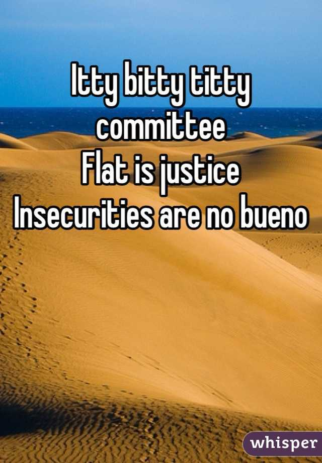 Itty bitty titty committee  Flat is justice Insecurities are no bueno