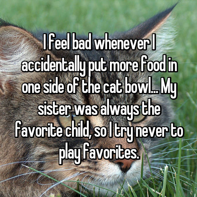 I feel bad whenever I accidentally put more food in one side of the cat bowl... My sister was always the favorite child, so I try never to play favorites.