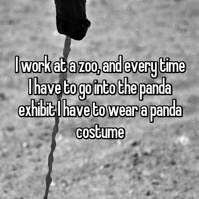 I work at a zoo, and every time I have to go into the panda exhibit I have to wear a panda costume