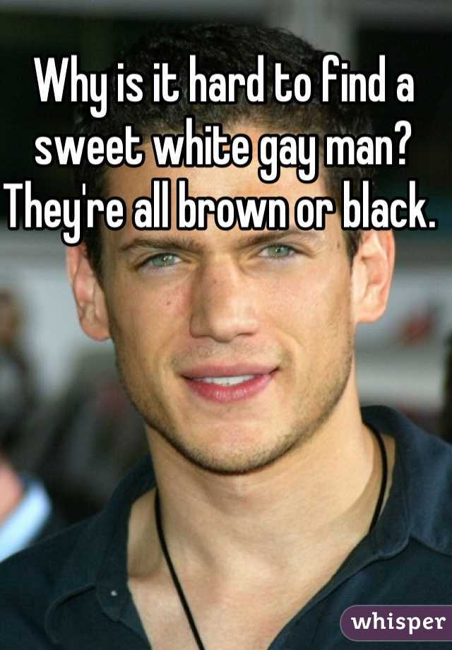 Why is it hard to find a sweet white gay man? They're all brown or black.