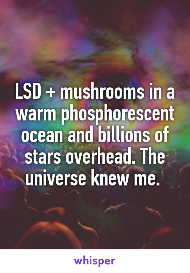 LSD + mushrooms in a warm phosphorescent ocean and billions of stars overhead. The universe knew me.