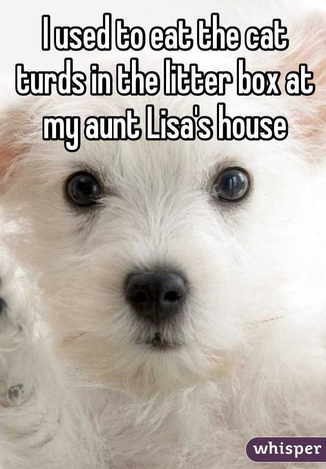 I used to eat the cat turds in the litter box at my aunt Lisa's house