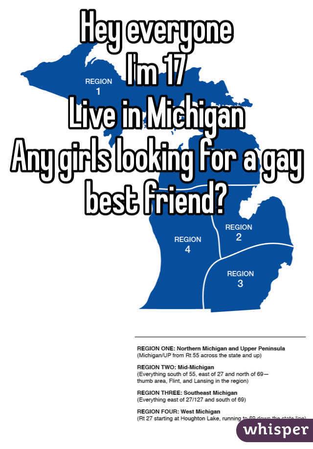 Hey everyone  I'm 17 Live in Michigan Any girls looking for a gay best friend?