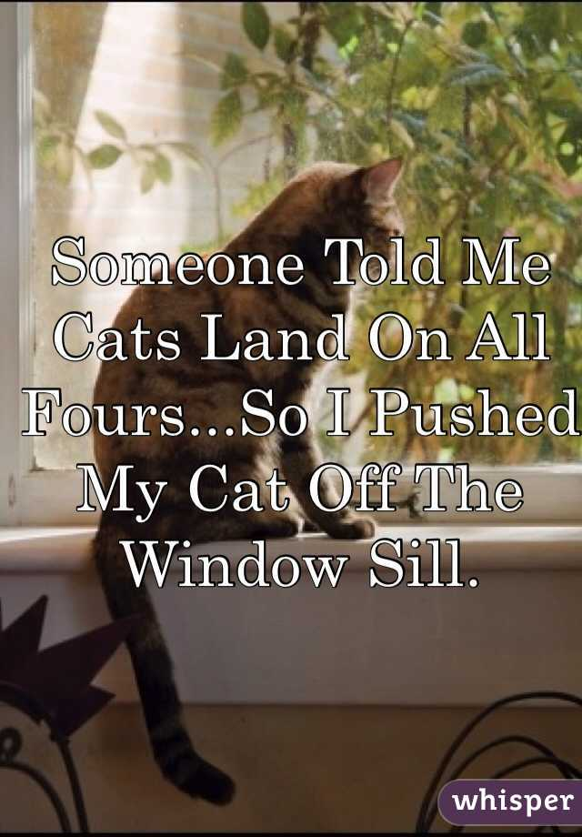Someone Told Me Cats Land On All Fours...So I Pushed My Cat Off The Window Sill.