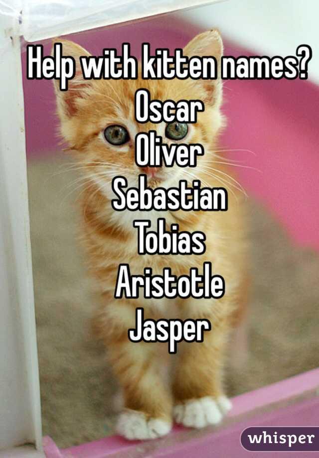 Help with kitten names? Oscar  Oliver  Sebastian  Tobias  Aristotle  Jasper