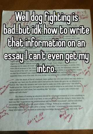 Essay on why fighting is bad