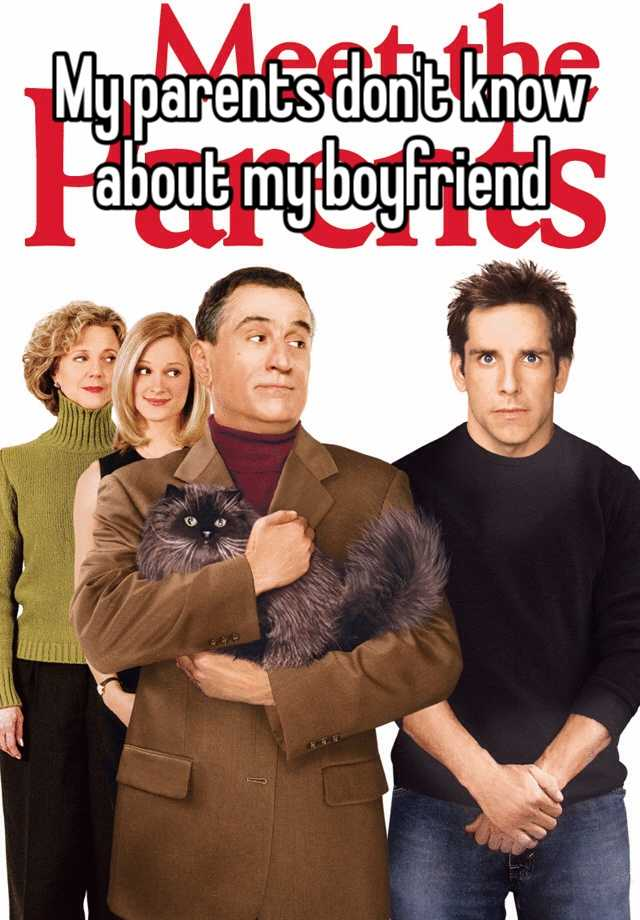 meet the parents review Have you seen meet the parents and meet the fockers this is more of the same this is more of the same depending on your viewpoint that will be a good or a bad thing.