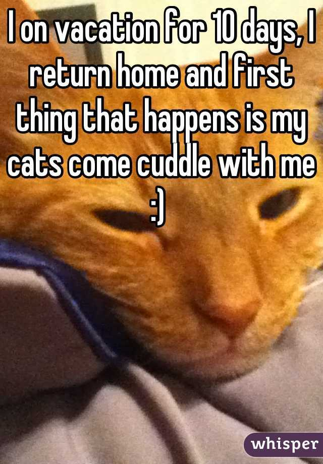 I on vacation for 10 days, I return home and first thing that happens is my cats come cuddle with me :)
