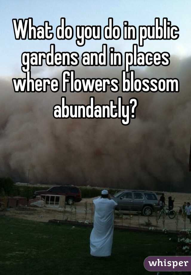 What do you do in public gardens and in places where flowers blossom abundantly?