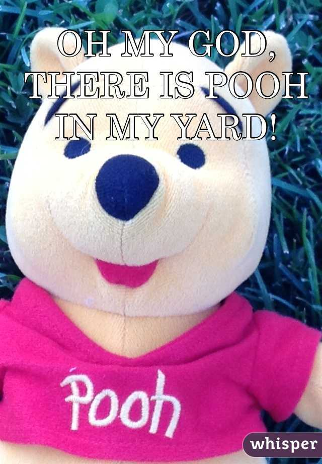OH MY GOD, THERE IS POOH IN MY YARD!