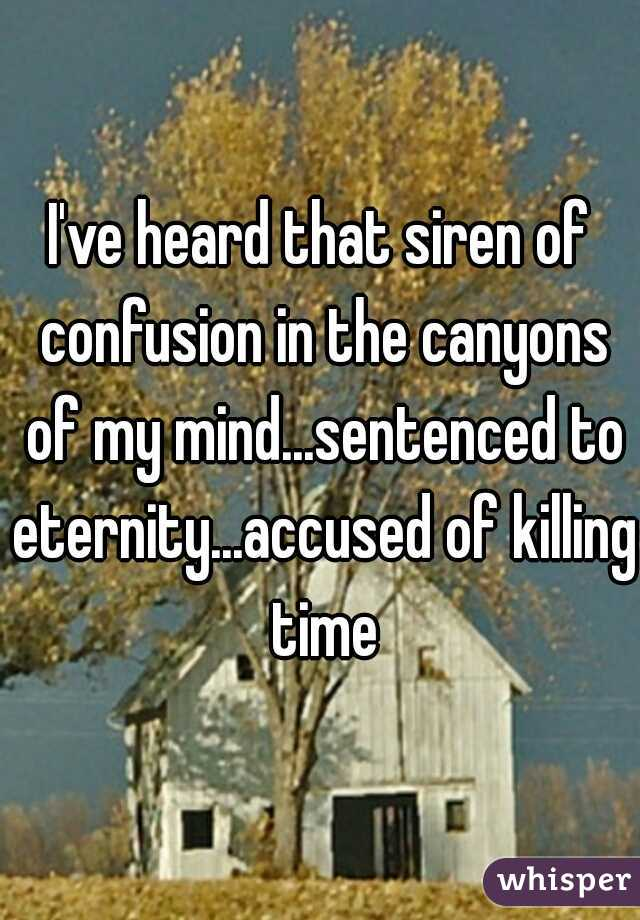 I've heard that siren of confusion in the canyons of my mind...sentenced to eternity...accused of killing time