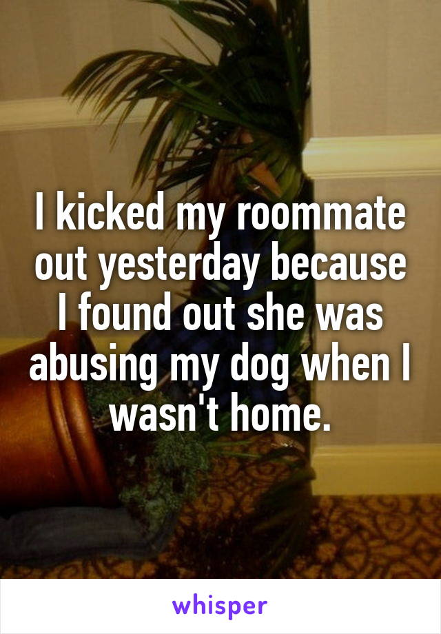 I kicked my roommate out yesterday because I found out she was abusing my dog when I wasn't home.