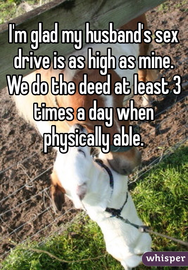 I'm glad my husband's sex drive is as high as mine. We do the deed at least 3 times a day when physically able.