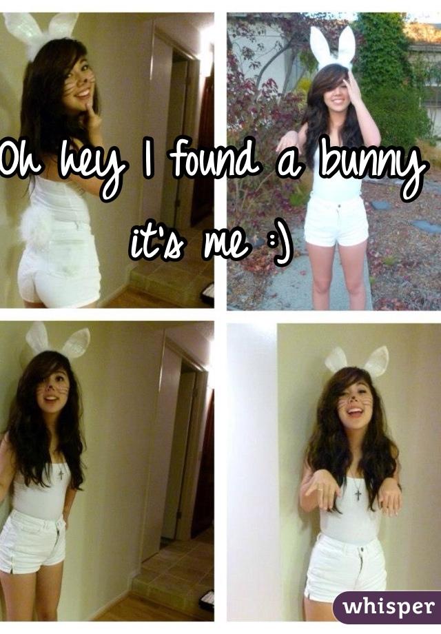 Oh hey I found a bunny it's me :)