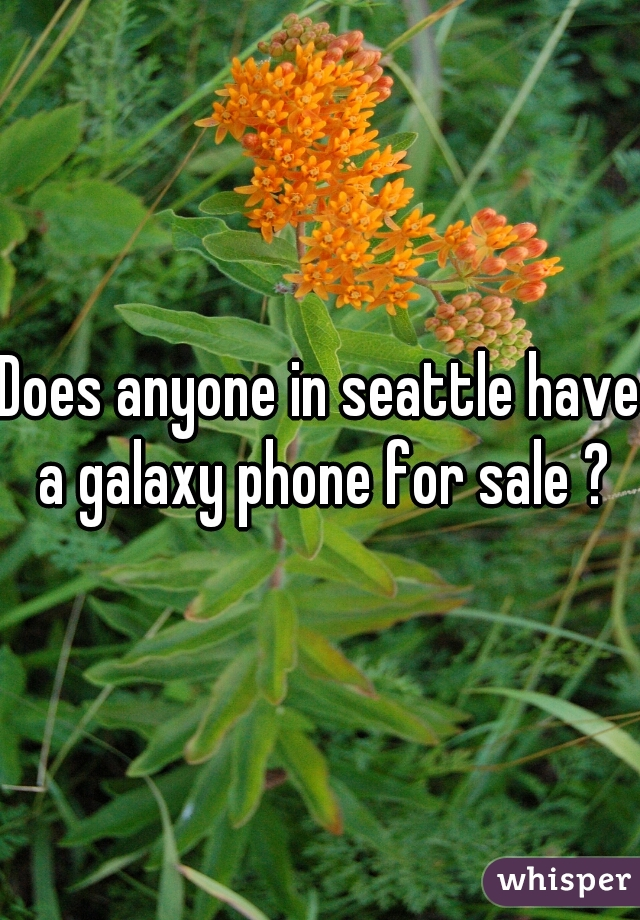 Does anyone in seattle have a galaxy phone for sale ?