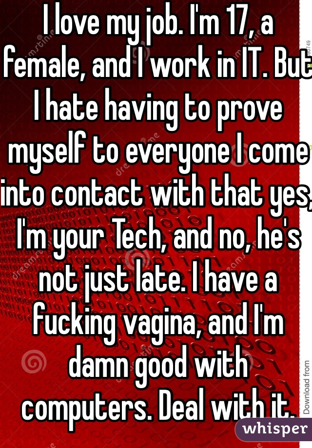I love my job. I'm 17, a female, and I work in IT. But I hate having to prove myself to everyone I come into contact with that yes, I'm your Tech, and no, he's not just late. I have a fucking vagina, and I'm damn good with computers. Deal with it.