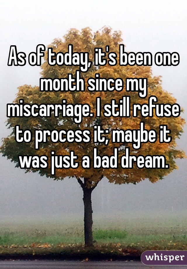 As of today, it's been one month since my miscarriage. I still refuse to process it; maybe it was just a bad dream.