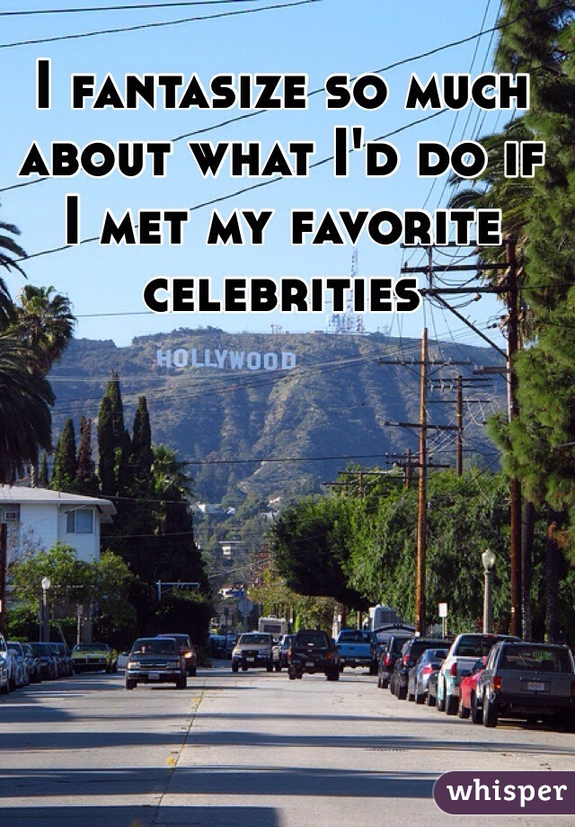 I fantasize so much about what I'd do if I met my favorite celebrities