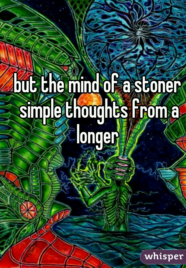 but the mind of a stoner simple thoughts from a longer