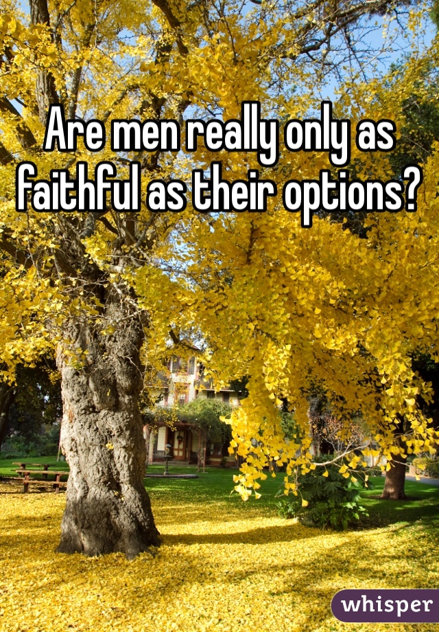 Are men really only as faithful as their options?
