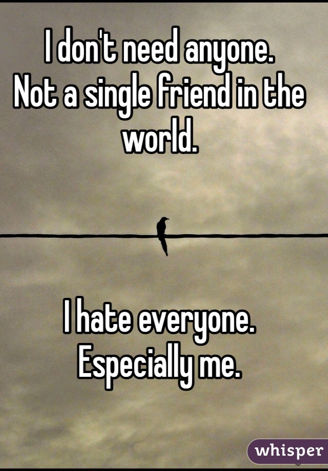 I don't need anyone. Not a single friend in the world.    I hate everyone. Especially me.