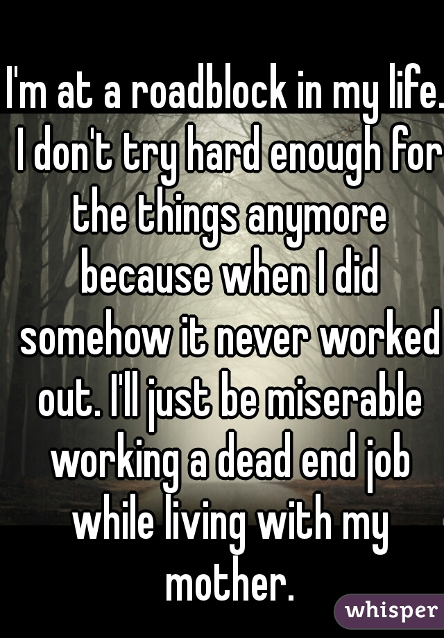I'm at a roadblock in my life. I don't try hard enough for the things anymore because when I did somehow it never worked out. I'll just be miserable working a dead end job while living with my mother.