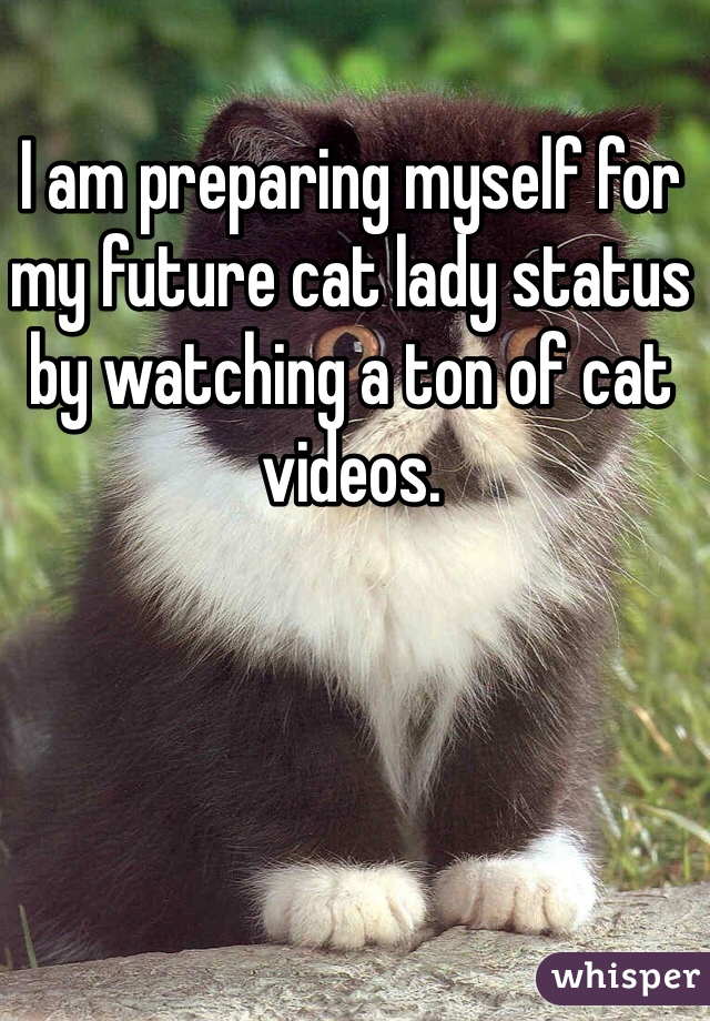 I am preparing myself for my future cat lady status by watching a ton of cat videos.