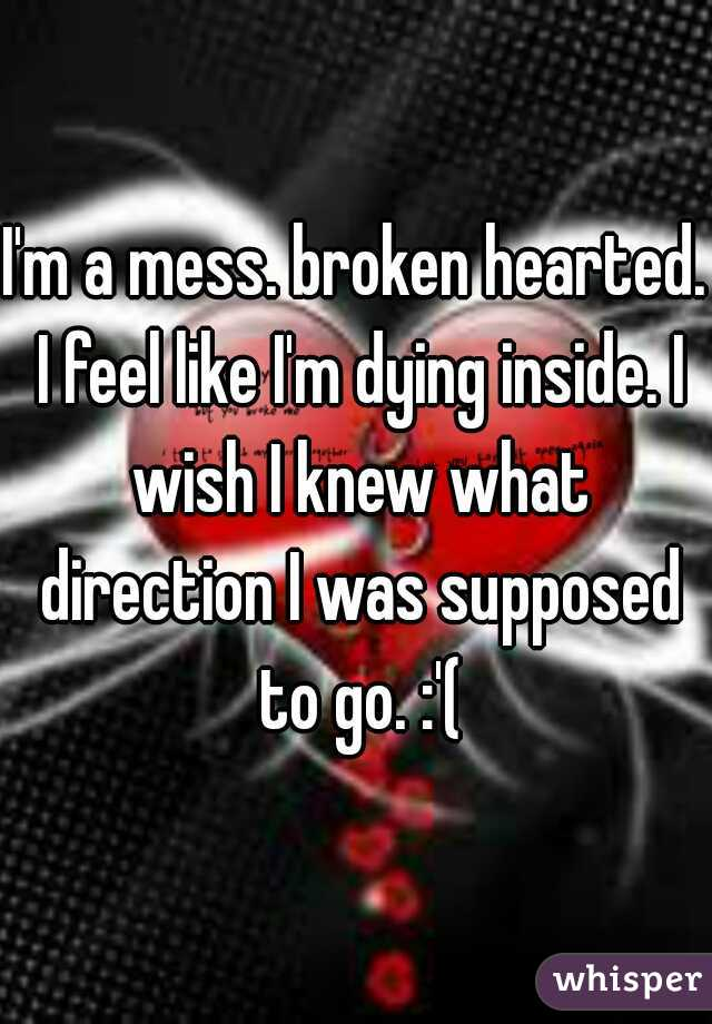 I'm a mess. broken hearted. I feel like I'm dying inside. I wish I knew what direction I was supposed to go. :'(